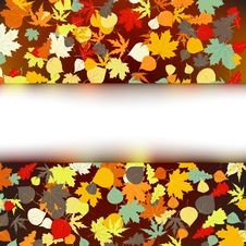 Free Colorful Autumnal Design Template. EPS 8 Stock Photos - 20121913