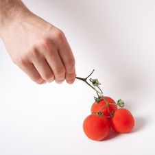 Free Tomato Hand Finger Royalty Free Stock Photos - 20121928