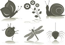 Free Insects (icons) Royalty Free Stock Images - 20124109