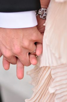 Free Hands Of The Bride And Groom Royalty Free Stock Photo - 20126245