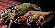 Free Dinner From Prawns Royalty Free Stock Images - 20126979