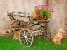 Free Old Cart Stock Photos - 20127173