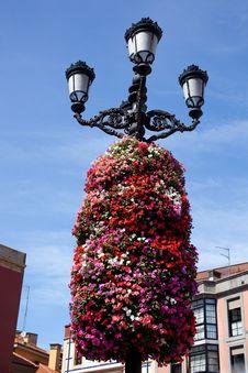 Free Flower Decoration On A Street Light Stock Image - 20129371