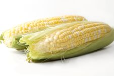 Free Corn Royalty Free Stock Photography - 20129577