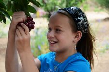 Free Girl Eating Cherries Off Of The Tree Stock Photography - 20129612