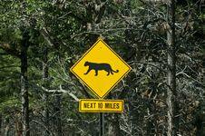 Free Mountain Lion Warning Sign Stock Photo - 20129960