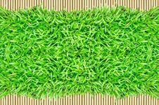Free Grass Frame On Bamboo Background Royalty Free Stock Images - 20130369
