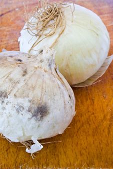 Free Two Bulbs Of Onion Stock Image - 20135371