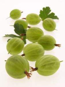 Free Gooseberries Royalty Free Stock Image - 20135736