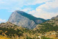 Free Crimean Mountain Falcon Royalty Free Stock Photo - 20136235