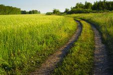 Free Turning Pathway Stock Images - 20137674