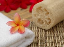 Free Spa And Wellness Stock Photography - 20139652
