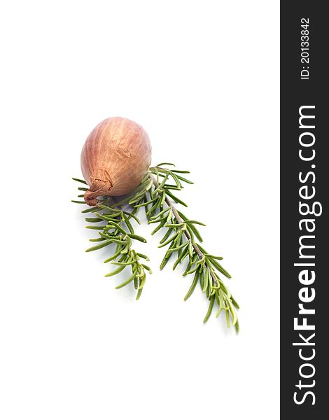 Summer vegetables on white : onion and rosemary