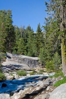 Free Sequoia National Forest, California, USA Stock Photography - 20140802