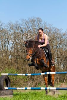Free Equestrian - Horse Jumping Stock Photography - 20141242
