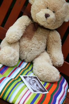 Free Teddy Bear And Baby Ultrasound Stock Image - 20142171