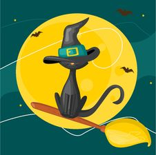 Cat On A Broom Royalty Free Stock Images