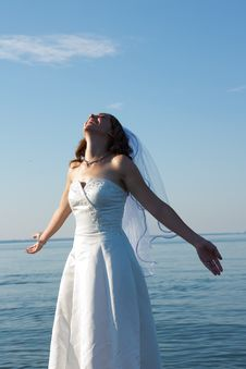 Free Bride At Beach Stock Images - 20145144
