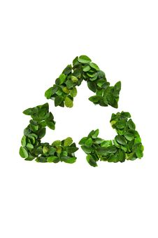 Free Recycle Icon Made Of Green Leaves Stock Image - 20145781
