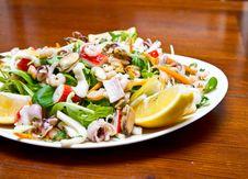 Free Seafood Salad Stock Photos - 20146643