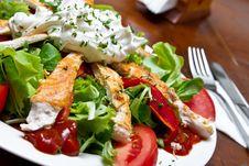 Free Chicken Salad Stock Image - 20146651