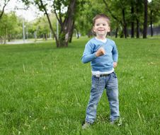 Free Portrait Of A Little Boy Outdoors Royalty Free Stock Images - 20147359
