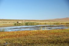 Free Landscape In Mongolia Stock Photography - 20148012