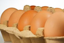 Free Eggs Stock Photos - 20148423