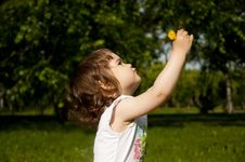 Free Girl Plays Park Stock Photo - 20148640
