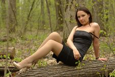 Free Pretty Girl Sitting On A Log Royalty Free Stock Images - 20149009