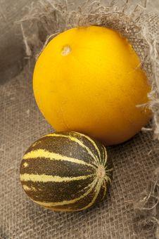 Free Melon Stock Photography - 20149202