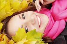 Free Woman In Garland Royalty Free Stock Images - 20149969