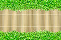 Free Grass Frame On Bamboo Texture Background Royalty Free Stock Photo - 20153745