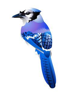Free Birdy Stock Image - 20151741