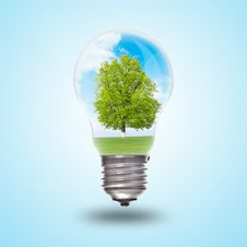 Free Light Bulb With Landscape Inside Stock Photography - 20151932