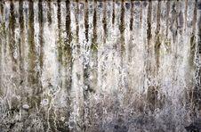 Free Wall Stock Photo - 20152730