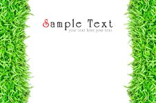 Free Grass Frame Isolated Royalty Free Stock Photos - 20153678