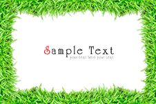 Free Grass Frame Isolated Royalty Free Stock Photo - 20153685