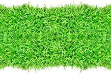 Free Grass Frame Isolated Stock Image - 20153701