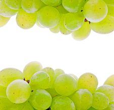 Free Green Grape Stock Image - 20154111