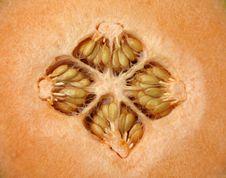 Free Cantaloupe Stock Photography - 20154222