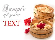 Free Oat Flakes With Currants Stock Photos - 20154723