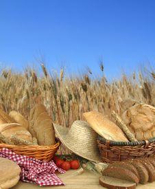 Free Fresh Bread Royalty Free Stock Image - 20155086