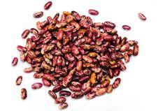 Free Bean Stock Photos - 20155163