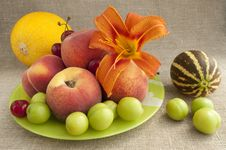 Free Fruit Platter Royalty Free Stock Photos - 20155758