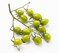 Mini Tomato Stock Photo