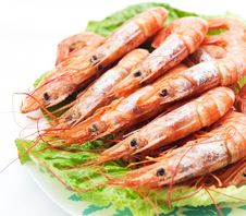 Free Red Shrimp Royalty Free Stock Photography - 20159527