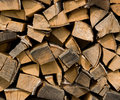 Free Birch Firewood Royalty Free Stock Images - 20164629