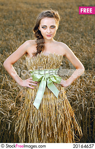 Free Woman In Wheat Field Royalty Free Stock Photography - 20164657