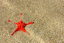 Free Red Starfish Royalty Free Stock Images - 20160029